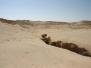 2007_Jordanien_12_Wadi_Rum_1
